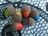 Large Rainbow Acorn Set