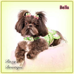 Name: Bella Breed: Shih-Tzu Location: Nebraska Item:  Pink Jacquard Daisy Puppy Dog Bow Designer:  Roxy's Bowtique