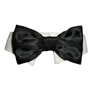 Dog Bow Tie Collar -  Black - Pooch Outfitters