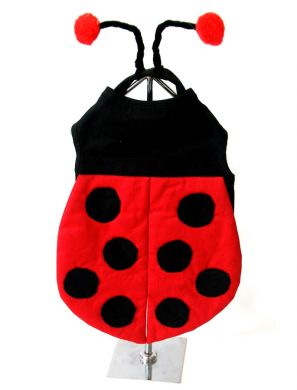 Lady Bug Dog Costume for dogs - Doggie Design