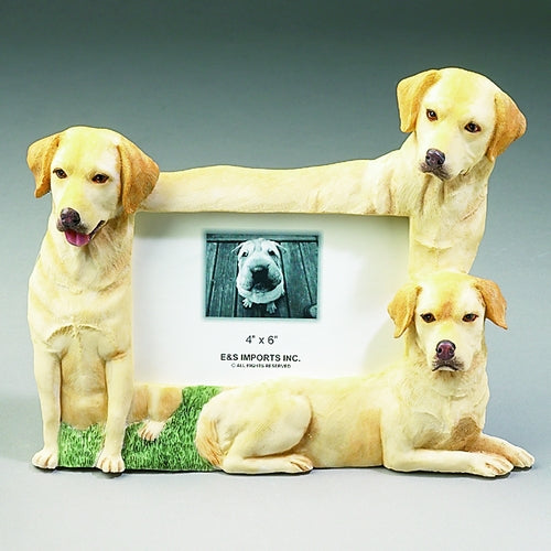 Yellow Labrador Picture Frame - E&S Imports