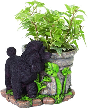 Black Poodle Flower Pot