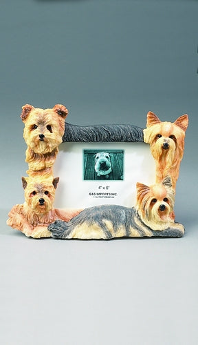 Yorkshire Terrier Picture Frame - E&S Imports