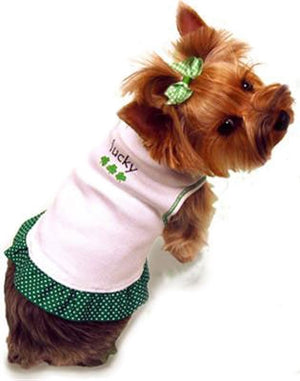 St. Patrick's Day Dog Dress - I See Spot