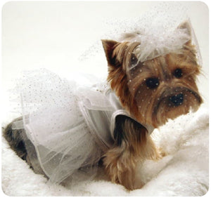 Doggie Wedding Dress
