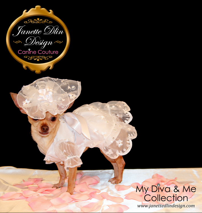 Elegant Dog Wedding Dress - Janette Dlin Design - Dog Dress