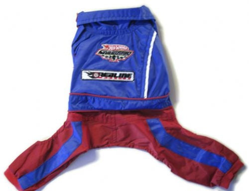 Hot Wheels Racing Jumper