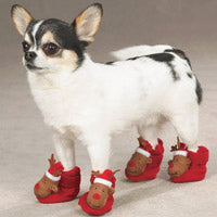 Reindeer Holiday Dog Slippers