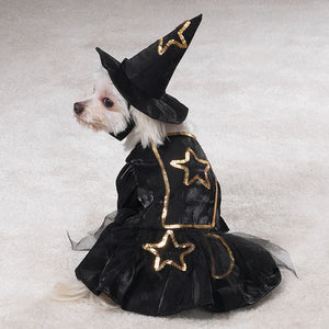 Witch Dog Costume - Casual Canine
