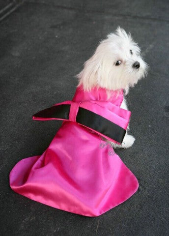 Diamonds Are A Dogs Best Friend Dog Dress - Marilyn Monroe Collection