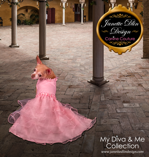 Pink Princess Dress - Janette Dlin Design