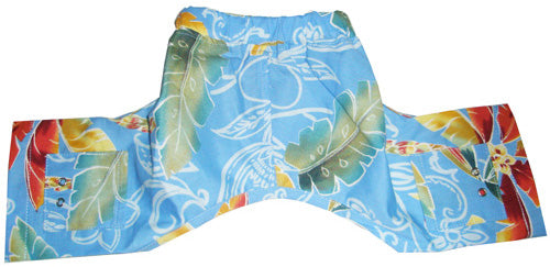 Fiji Dog Swim Trunk