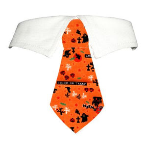 Pumpkin Shirt Collar - Dog Collar - Pooch Outfitters