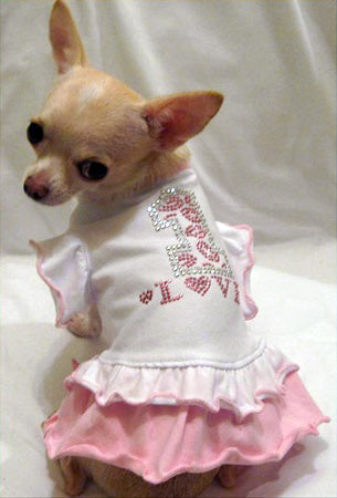 #1 Fancy Ruffle Dog Dress - Platinum Puppy Couture