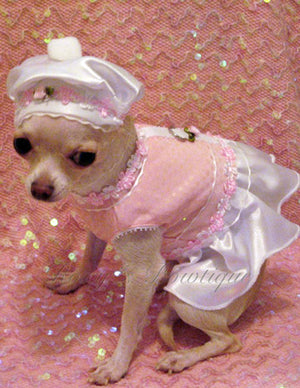 Pink Parfait Dog Harness Dress - Platinum Puppy Couture