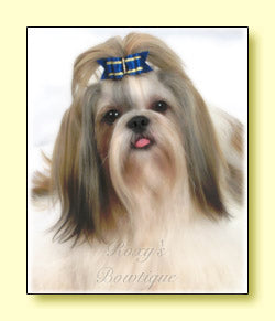 Roxy's Special Selection - Royal Blue - Adult Dog Bow