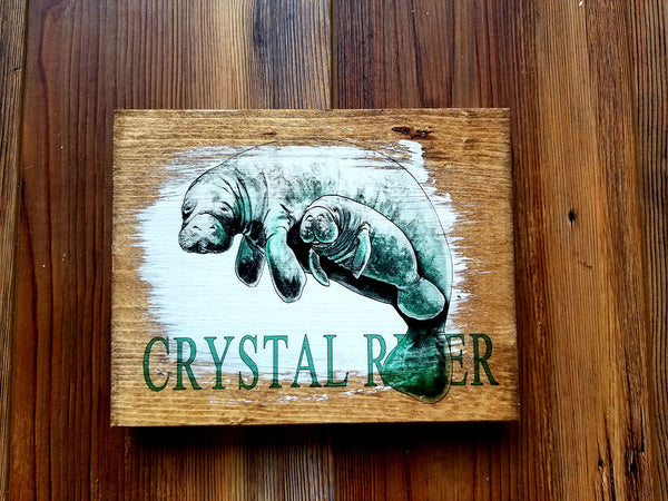 Crystal River, FL Mini Plank Manatee Artwork