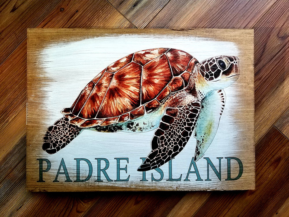 Padre Island, TX Turtle Artwork
