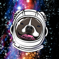 Space Dogyssey Canvas