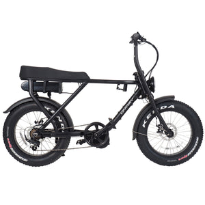 Retro Fat Tire E-bike(Middle Motor/Front and rear Motor)