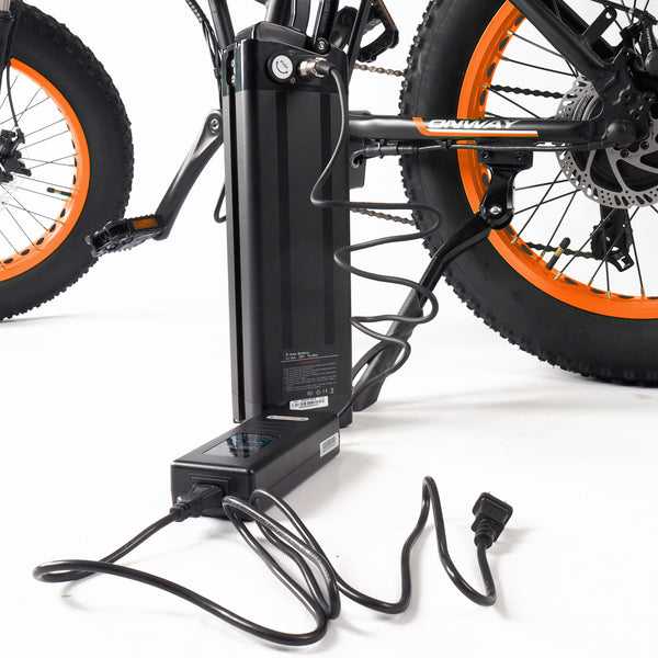 PTease - Folding 750W Ebike - IN STOCK