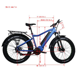 Fat HD 1000W Ebike