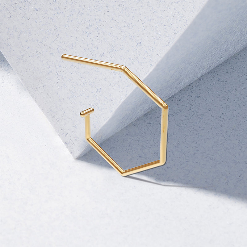 The Polygon Dangle Earrings