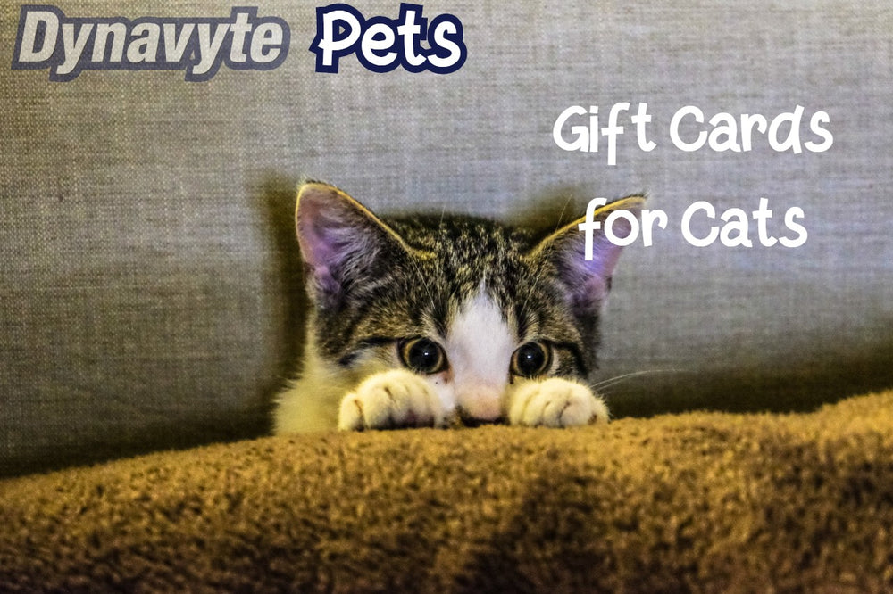 Gift Cards for Cats