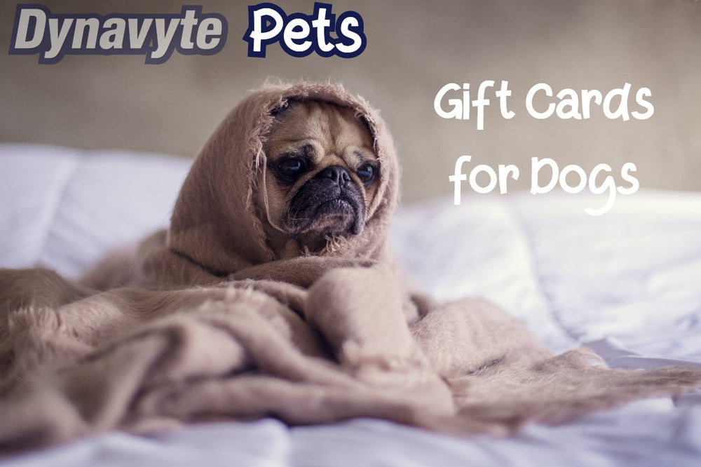 Gift Cards for Dogs