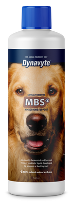 Big House Dog Mbs - 500Ml Healthy Gut