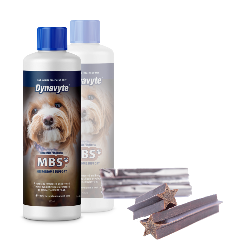 Two 4 One Dogs MBS - 250ML