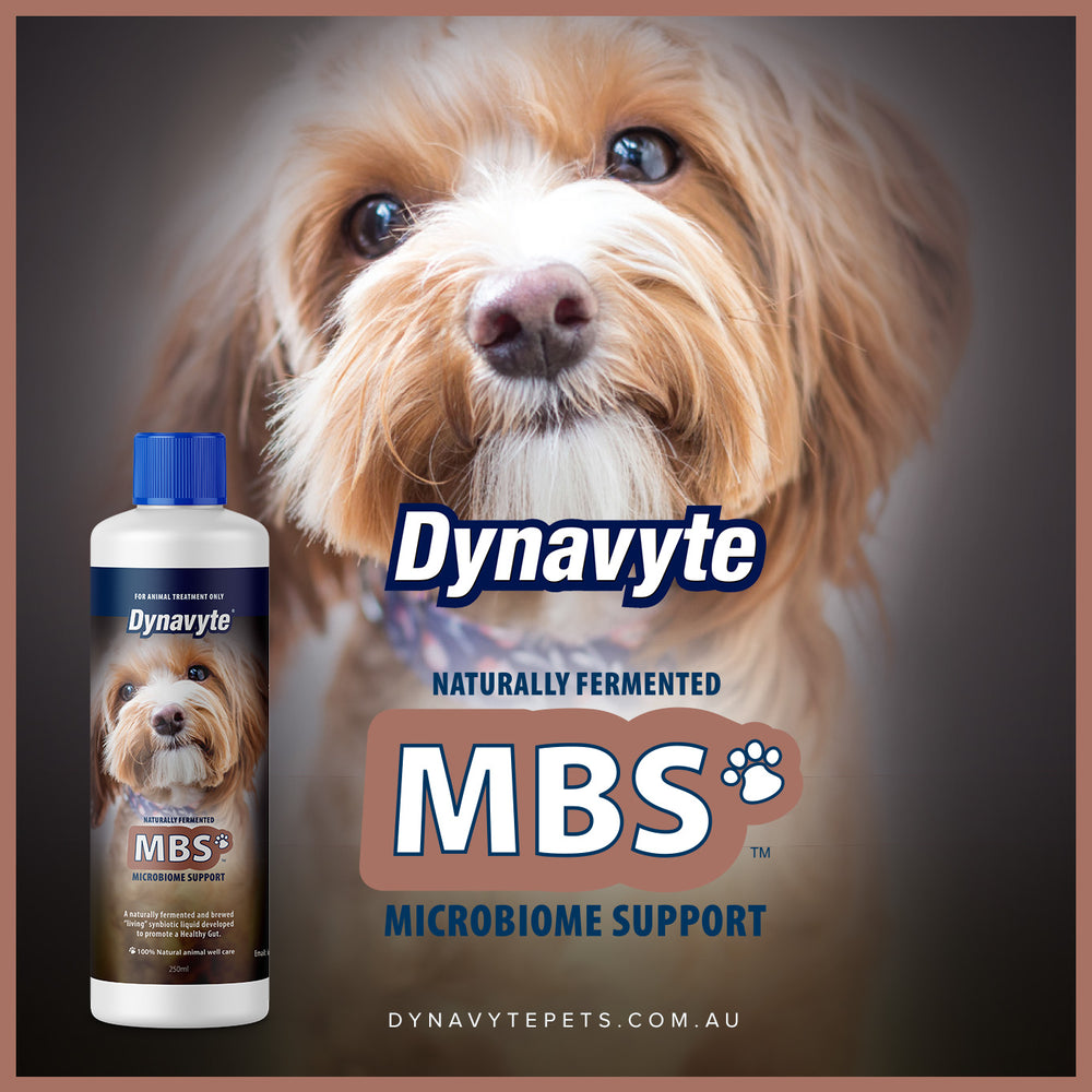 Small Dogs MBS - 250ML