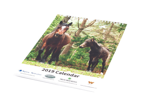 Charity Calendar 2019 - In aid of Bowel Cancer UK