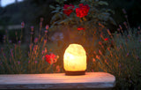 Natural Himalayan Salt Lamp 2-4Kg
