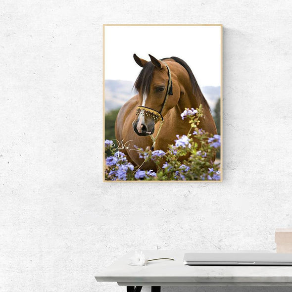 Horse Flowers - Full Round Diamond - 30x40cm