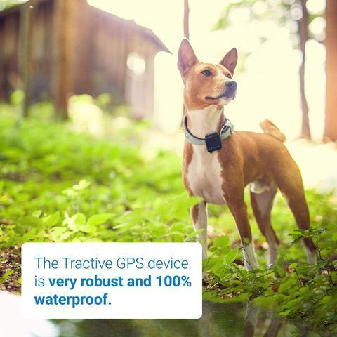 Pets GPS Tracker(50%OFF & buy 3 FREE SHIPPING)