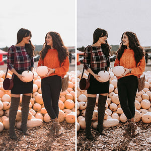 Moody Fall Lightroom Desktop Presets