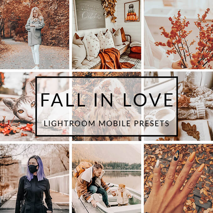 Fall In Love Lightroom Desktop Presets