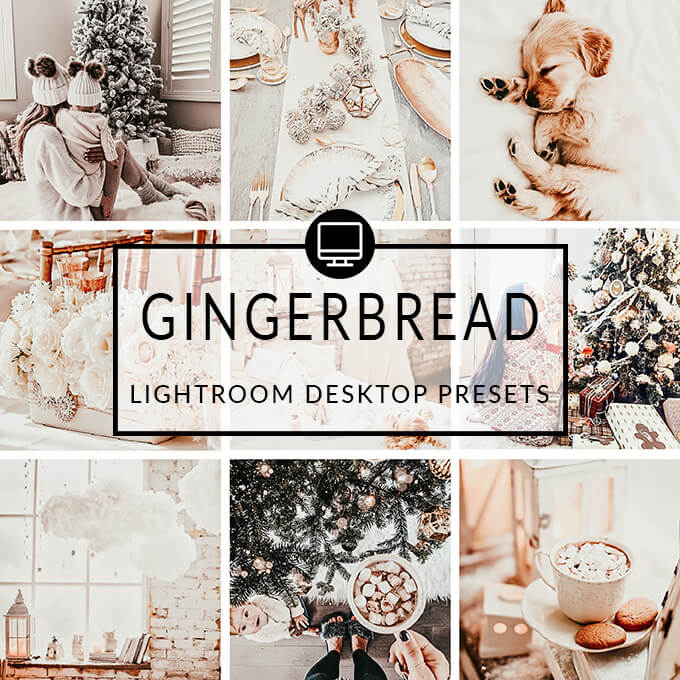 Gingerbread Lightroom Desktop Presets