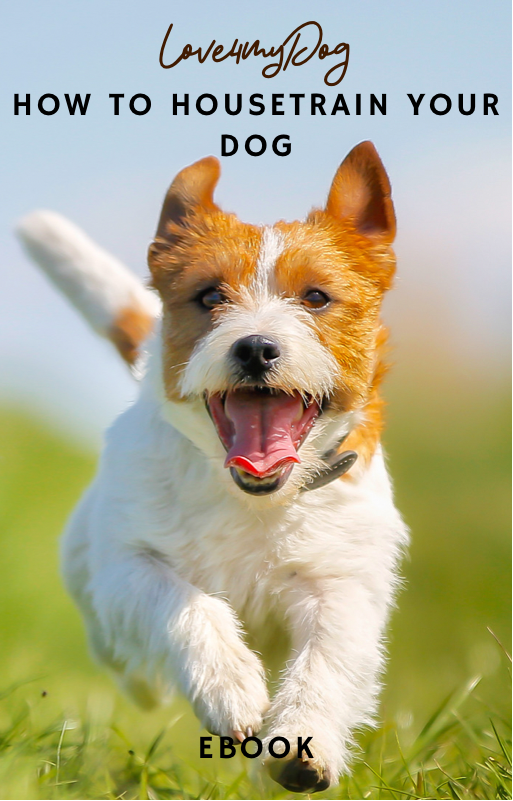 Ebook: How to housetrain your dog