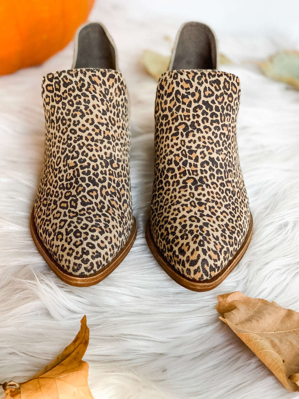 FOCUS LEOPARD SLIP-ON