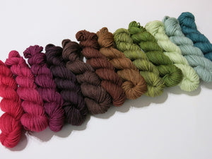 Fruitful Forest 12 Colour Mini Skein Set on Choufunga Sock
