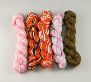 hand dyed merino sock yarn mini skein set