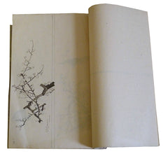A 19th Century Book of Hand Painted Illustrations: Birds, Landscapes, People