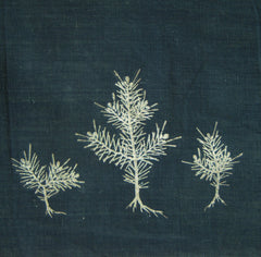 A Long Stitched Fragment of Stencil Dyed Cotton: Young Pines