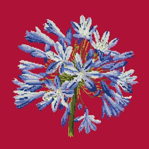 Agapanthus Needlepoint Kit Elizabeth Bradley Design Bright Red