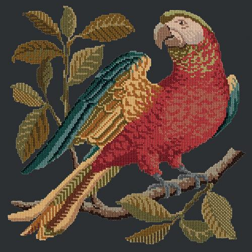 Alister the Parrot Needlepoint Kit Elizabeth Bradley Design Black