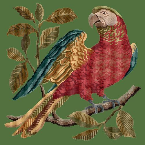 Alister the Parrot Needlepoint Kit Elizabeth Bradley Design Dark Green