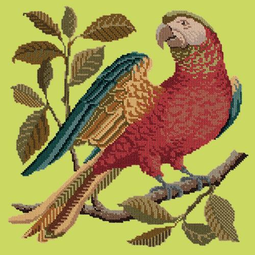 Alister the Parrot Needlepoint Kit Elizabeth Bradley Design Pale Lime