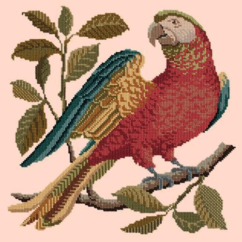Alister the Parrot Needlepoint Kit Elizabeth Bradley Design Salmon Pink